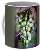 Taste Of Nature Coffee Mug