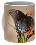 Tattered Tails Coffee Mug