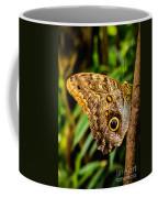 Tawny Owl Butterfly Coffee Mug