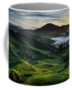 Tea Plantation At Dawn Coffee Mug