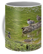 Teal Family Gathering Coffee Mug