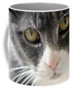 Tears Of A Cat Coffee Mug