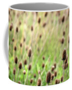 Teasel Meadow Coffee Mug