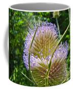 Teasel Thistle - Dipsacus Fullonum  Coffee Mug