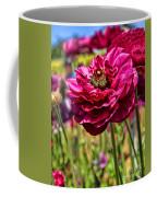 Tecolote Ranunculus Flowers By Diana Sainz Coffee Mug