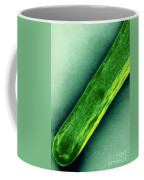 Tem Of Mycobacterium Tuberculosis Coffee Mug by Kwangshin Kim