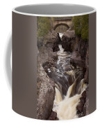 Temperance River Scene 1 Coffee Mug