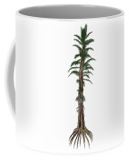 Tempskya Prehistoric Tree-like Fern Coffee Mug