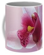 Temptation - Pink Cymbidium Orchid Coffee Mug