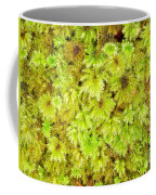 Tender Fresh Green Moss Background Texture Pattern Coffee Mug
