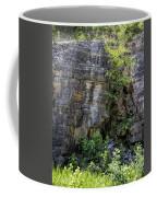 Tennessee Limestone Layer Deposits Coffee Mug