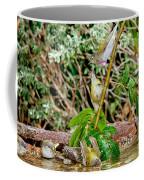 Tennessee Warblers Coffee Mug