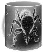 Termite Soldier Coffee Mug by David M. Phillips