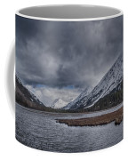 Tern Lake Coffee Mug