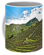 Terraces Of Machu Picchu-peru Coffee Mug
