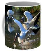 Territory Dispute Coffee Mug