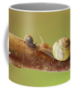 Tete A Tete Coffee Mug