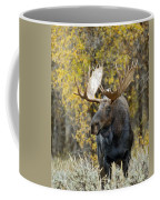 Teton Bull Moose Coffee Mug by Gary Langley