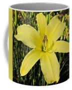 Tetrina's Daughter Daylily Coffee Mug