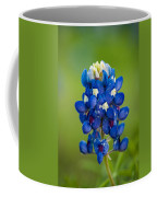 Texas Blue Coffee Mug