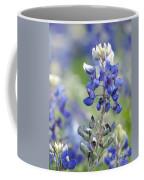 Texas Bluebonnets 04 Coffee Mug