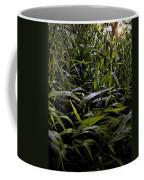 Texas Grasses Coffee Mug