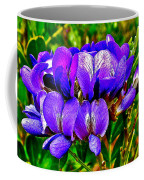Texas Mountain Laurel Along Window Trail In Big Bend National Park-texas Coffee Mug
