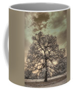 Texas Oak Tree Coffee Mug