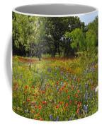 Texas Wildflower Medley Coffee Mug