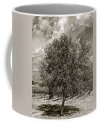 Texas Winery Tree And Vineyard Coffee Mug