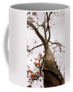That Tree Coffee Mug
