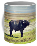 The African Buffalo. Ngorongoro In Tanzania. Coffee Mug