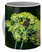 The American Snout Butterfly Coffee Mug