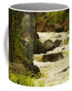 The Amsden River Wyoming Coffee Mug