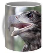 The Beak Of A Preator Coffee Mug