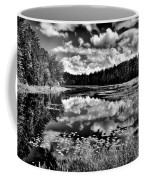 The Beautiful Fly Pond On Rondaxe Road - Old Forge Ny Coffee Mug by David Patterson