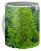 The Beauty Of A Tree Coffee Mug