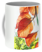 The Beauty Of Nature  Coffee Mug
