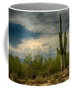 The Beauty Of The Desert Southwest  Coffee Mug