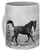 The Beauty Of The Horse Coffee Mug
