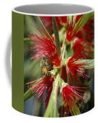 The Bee And Bottlebrush Coffee Mug