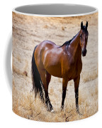 The Big Bay Coffee Mug
