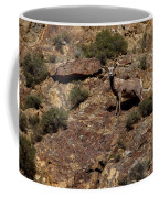 The Bighorn Uwe Coffee Mug