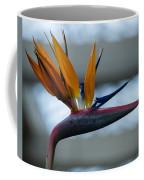 The Bird Of Paradise Coffee Mug