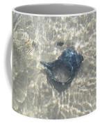 The Black Seashell Coffee Mug