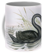The Black Swan Coffee Mug by John Gould
