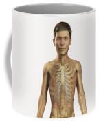 The Bones Within The Body Pre-adolescent Coffee Mug