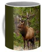 The Bull Elk Coffee Mug