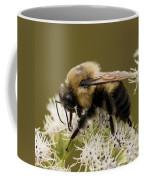 The Bumble Bee.. Coffee Mug