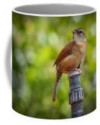 The Carolina Wren Coffee Mug